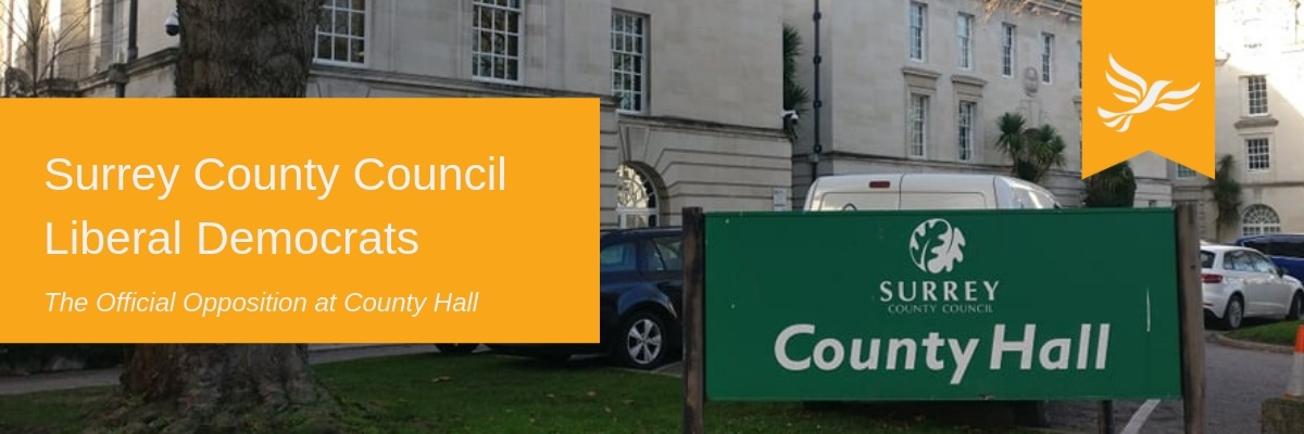 SCC Lib Dems Header Large